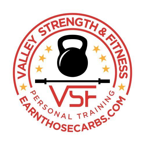 VST Logo on white 2