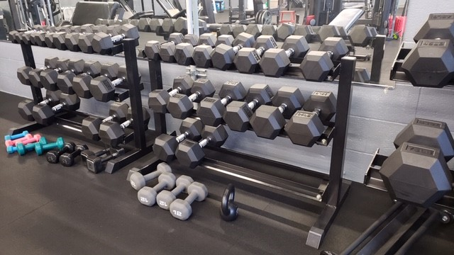 Personal Training dumbells